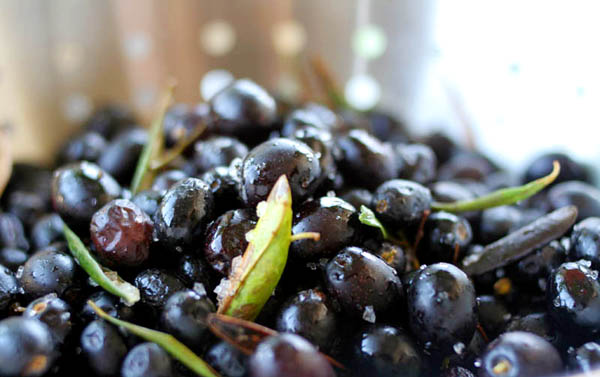 black-olives4